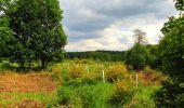 Randonnée Marche COYOLLES - en forêt de Retz_78_les rayons du Rond Capitaine - Photo 134