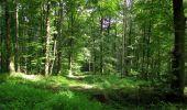 Randonnée Marche HARAMONT - en forêt de Retz_79_08_2019_vers Taillefontaine et Retheuil par les lisières - Photo 60