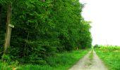 Randonnée Marche COYOLLES - en forêt de Retz_78_les rayons du Rond Capitaine - Photo 71