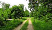 Randonnée Marche COYOLLES - en forêt de Retz_78_les rayons du Rond Capitaine - Photo 102