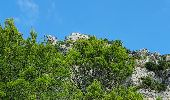 Randonnée Marche LA ROQUEBRUSSANNE - La Roquebrussane la cheminée  de la Loube - Photo 1