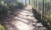 Trail Walk CONCA - GR20 Etape 15 Paliri Conca - Photo 1