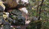 Randonnée Marche FONTAINEBLEAU - Forêt de Fontainebleau tour de Denecourt 21-09-19.ori - Photo 4
