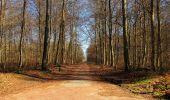 Trail Walk RETHEUIL - en forêt de Retz_76_dans les forêts de Retz et de Compiègne - Photo 83