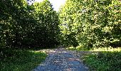 Trail Walk DAMPLEUX - en forêt de Retz_80_sur la Route Tortue et la Route Droite - Photo 264