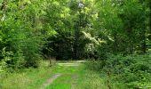 Randonnée Marche HARAMONT - en forêt de Retz_79_08_2019_vers Taillefontaine et Retheuil par les lisières - Photo 74