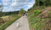 Randonnée Marche Profondeville - Sept Meuse Profondeville  21,4 km - Photo 5