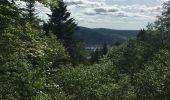 Randonnée Marche SAINT-ETIENNE-LES-REMIREMONT - Le Saint Mont boucle 13,9kms - Photo 10