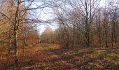 Trail Walk PIERREFONDS - en forêt de Compiègne_24_Tournantes sur le Voliard et sur la Fortelle_chaussée Brunehaut - Photo 2