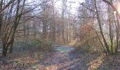 Trail Walk SAINT-JEAN-AUX-BOIS - en forêt de Compiègne_33_12_2019_les Tournantes de l'étang Saint-Jean et des Prés Saint-Jean - Photo 46