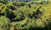 Trail Walk DAMPLEUX - en forêt de Retz_80_sur la Route Tortue et la Route Droite - Photo 245