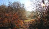 Trail Walk SAINT-JEAN-AUX-BOIS - en forêt de Compiègne_33_12_2019_les Tournantes de l'étang Saint-Jean et des Prés Saint-Jean - Photo 38