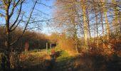 Trail Walk SAINT-JEAN-AUX-BOIS - en forêt de Compiègne_33_12_2019_les Tournantes de l'étang Saint-Jean et des Prés Saint-Jean - Photo 8