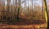 Trail On foot VIEUX-MOULIN - en forêt de Compiègne_23_la Grotte des Ramoneurs_le Mont Berny - Photo 90