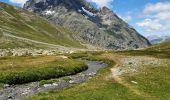 Randonnée Marche VILLAR-D'ARENE - traversée du Col d'Arsine - Photo 9