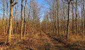 Trail Walk PIERREFONDS - en forêt de Compiègne_24_Tournantes sur le Voliard et sur la Fortelle_chaussée Brunehaut - Photo 14