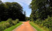 Randonnée Marche HARAMONT - en forêt de Retz_79_08_2019_vers Taillefontaine et Retheuil par les lisières - Photo 114