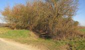 Trail Walk RETHEUIL - en forêt de Retz_76_dans les forêts de Retz et de Compiègne - Photo 65