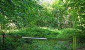 Randonnée Marche HARAMONT - en forêt de Retz_79_08_2019_vers Taillefontaine et Retheuil par les lisières - Photo 21