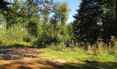 Trail Walk DAMPLEUX - en forêt de Retz_80_sur la Route Tortue et la Route Droite - Photo 298