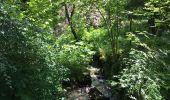 Randonnée Marche Havelange - Bois, Rivière et champs - Photo 1