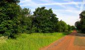 Randonnée Marche COYOLLES - en forêt de Retz_78_les rayons du Rond Capitaine - Photo 131