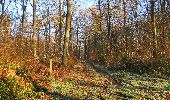 Trail Walk SAINT-JEAN-AUX-BOIS - en forêt de Compiègne_33_12_2019_les Tournantes de l'étang Saint-Jean et des Prés Saint-Jean - Photo 175