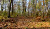 Randonnée Marche LONGPONT - en forêt de Retz_77_Longpont_Puiseux en Retz_AR - Photo 133