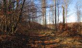 Trail Walk PIERREFONDS - en forêt de Compiègne_24_Tournantes sur le Voliard et sur la Fortelle_chaussée Brunehaut - Photo 117