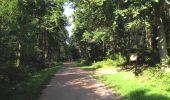 Randonnée A pied VILLERS-COTTERETS - le GR11A  dans la Forêt de Retz  - Photo 82