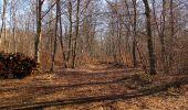 Trail Walk PIERREFONDS - en forêt de Compiègne_24_Tournantes sur le Voliard et sur la Fortelle_chaussée Brunehaut - Photo 24