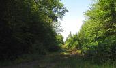 Randonnée Marche LACROIX-SAINT-OUEN - en forêt de Compiègne_35_la Croix Saint-Sauveur_le Ru du Goderu - Photo 86