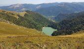 Trail Walk METZERAL - Steinabruck - Le Hohneck et ses 3 lacs Fischboedle, Altenweiher et Schiessrothried - Photo 45