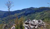 Randonnée Marche ROVON - Pied Aigu - Photo 2