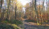 Trail Walk SAINT-JEAN-AUX-BOIS - en forêt de Compiègne_33_12_2019_les Tournantes de l'étang Saint-Jean et des Prés Saint-Jean - Photo 106