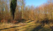 Trail Walk PIERREFONDS - en forêt de Compiègne_24_Tournantes sur le Voliard et sur la Fortelle_chaussée Brunehaut - Photo 77