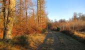 Trail Walk SAINT-JEAN-AUX-BOIS - en forêt de Compiègne_33_12_2019_les Tournantes de l'étang Saint-Jean et des Prés Saint-Jean - Photo 200