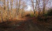 Trail Walk PIERREFONDS - en forêt de Compiègne_24_Tournantes sur le Voliard et sur la Fortelle_chaussée Brunehaut - Photo 110