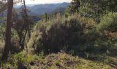 Randonnée Marche SAINT-RAPHAEL - z pic martin 10-12-19 - Photo 5