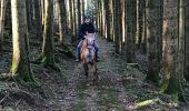 Randonnée Randonnée équestre FOUGEROLLES - Le Sarcenot 1h30 à pied - Photo 1
