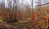 Trail Walk PIERREFONDS - en forêt de Compiègne_24_Tournantes sur le Voliard et sur la Fortelle_chaussée Brunehaut - Photo 54