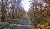 Trail Walk SAINT-JEAN-AUX-BOIS - en forêt de Compiègne_33_12_2019_les Tournantes de l'étang Saint-Jean et des Prés Saint-Jean - Photo 43