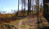 Randonnée A pied VILLERS-COTTERETS - le GR11A  dans la Forêt de Retz  - Photo 69