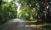 Randonnée Marche LACROIX-SAINT-OUEN - en forêt de Compiègne_35_la Croix Saint-Sauveur_le Ru du Goderu - Photo 33