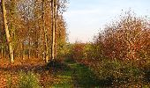 Randonnée Marche LONGPONT - en forêt de Retz_77_Longpont_Puiseux en Retz_AR - Photo 152
