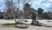 Randonnée Marche NOISY-SUR-ECOLE - Boucle les trois pignons Fontainebleau - Photo 9