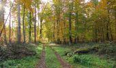 Randonnée Marche SAINT-JEAN-AUX-BOIS - en forêt de Compiègne_32_11_2019_les Tournantes de la Muette et sous la Tête Saint-Jean - Photo 118