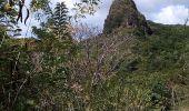 Randonnée Marche LE FRANCOIS - LA BOUCLE DE POINTE COUCHÉE PAR LE ROCHER LECLERC - Photo 8
