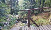 Trail Walk METZERAL - Steinabruck - Le Hohneck et ses 3 lacs Fischboedle, Altenweiher et Schiessrothried - Photo 8