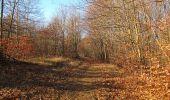 Trail Walk PIERREFONDS - en forêt de Compiègne_24_Tournantes sur le Voliard et sur la Fortelle_chaussée Brunehaut - Photo 108